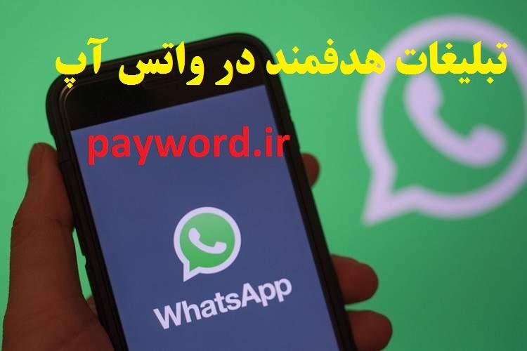 برنامه ارسال پیام انبوه در واتس اپ
